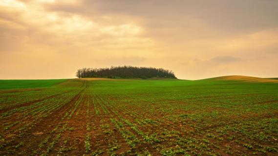 Mährische Landschaft