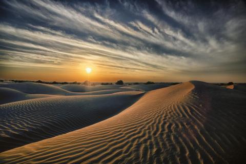 Thar-Wüste