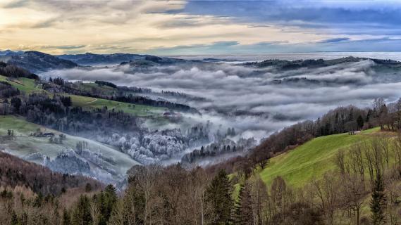 Oberdambach