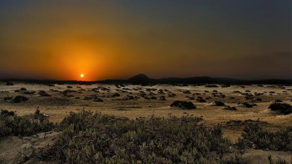 Wüstenabend