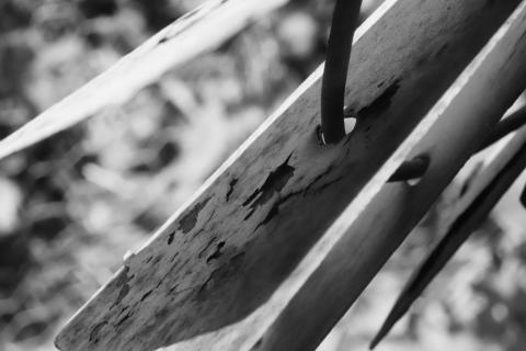 rostendes Windrad im Garten