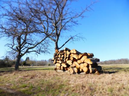 Natur Holzstapel