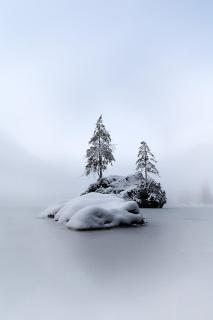 Hintersee | Different View of a bavarian lake V