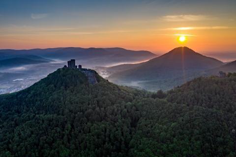 Burg Trifels erwacht