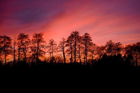 Felder nach Sonnenuntergang