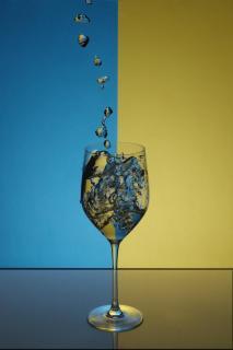 Weinsplash
