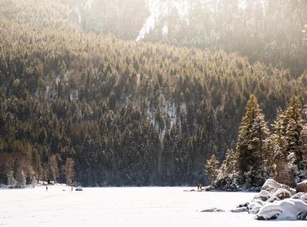 Landschaftsaufnahme, Winter