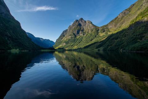 Auf dem Fjord unterwegs