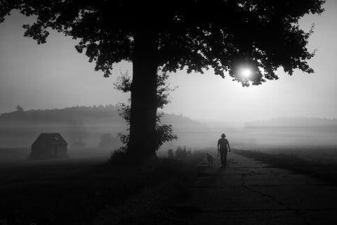 Morgentlicher Weg
