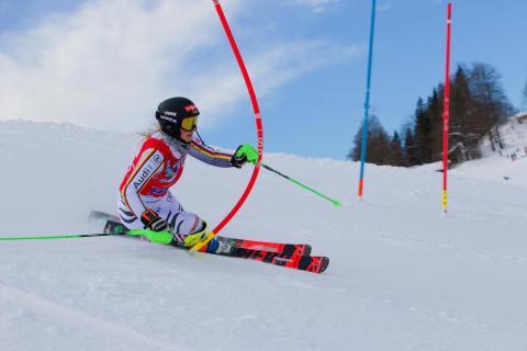 DJM Slalom 2019