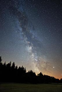 Sterne 331