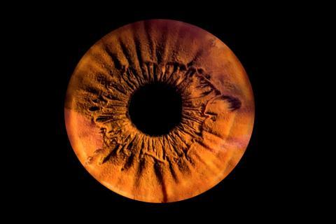 Iris-Foto eines braunen Auges