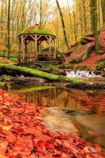 Karlstalschlucht im Herbst