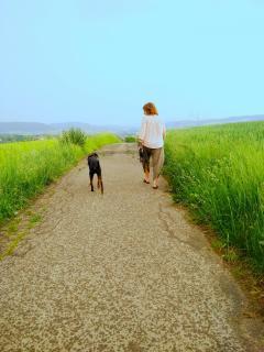 Mensch u. Hund gemeinsam auf dem Weg zur Natur