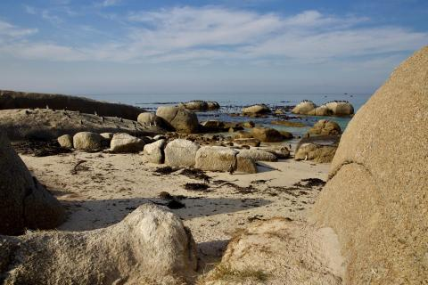 Bolders Beach Südafrika