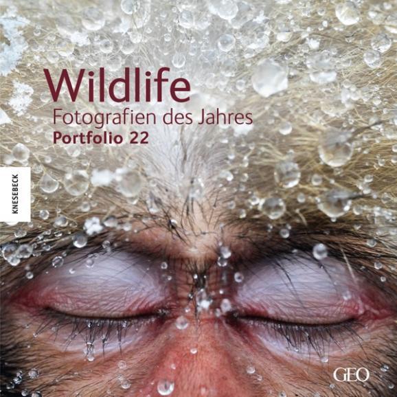 Wildlife Fotos des Jahres 2012