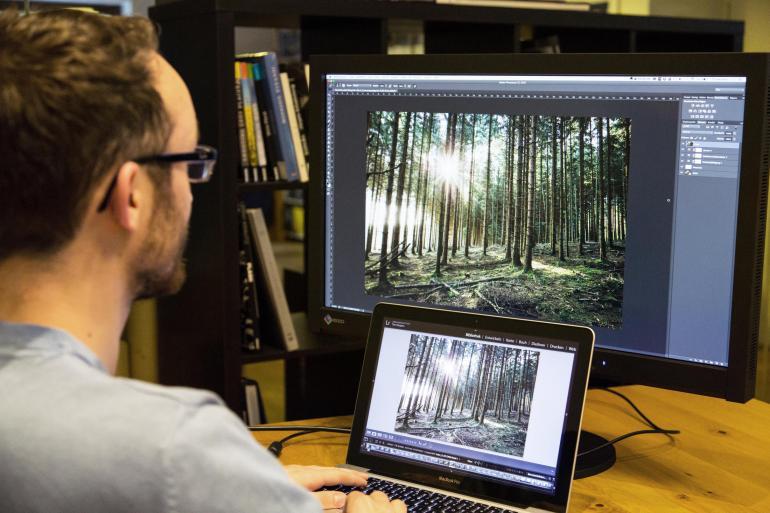 Perfekter Bildschirm: Vier Monitore für Fotobearbeiter im Vergleich