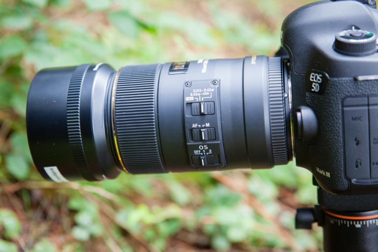 Makrofotografie: Die Natur im Detail