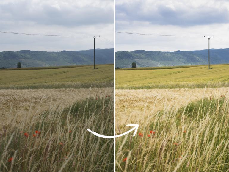Vor und nach der Bildoptimierung in StudioLine Photo Classic 4 SE: Sony Alpha 77 II, 40mm, F/5,6, ISO 200, 1/800s