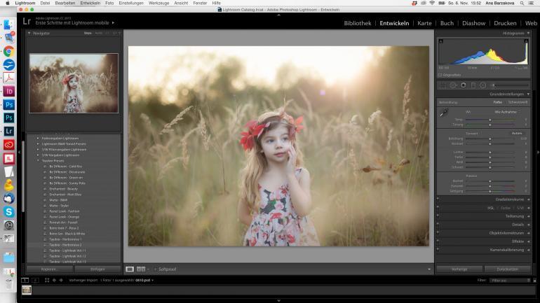 Lightroom-Presets: Perfekter Look mit Farbvorgaben