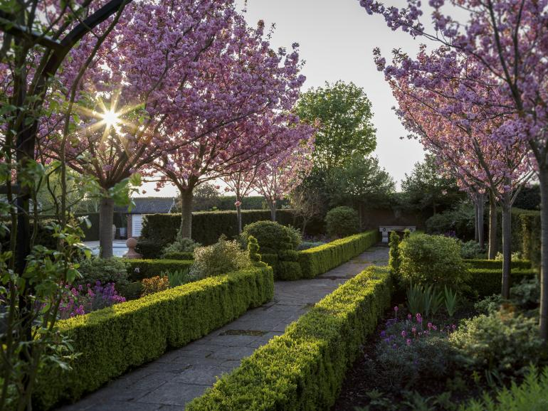 International Garten Photographer of the Year: Die schönsten Gartenfotos aus aller Welt