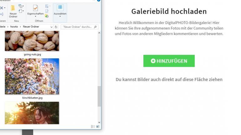 Die neue DigitalPHOTO Galerie - Schritt für Schritt erklärt