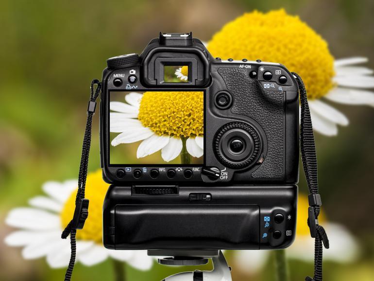 Foto-Basics: Focus Peaking