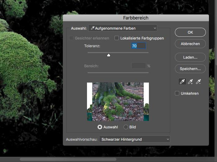 Photoshop-Magie: Zaubern Sie ein Fantasy-Composing