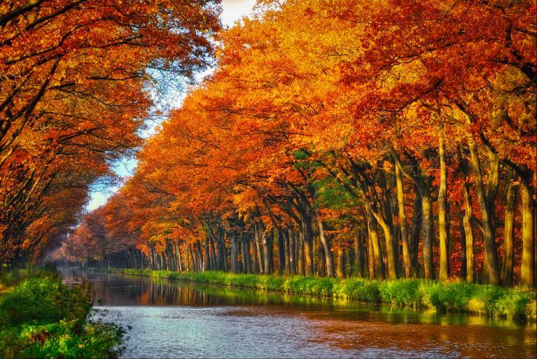 10 Herbstmotive aus unserer DigitalPHOTO Lesergalerie | DigitalPHOTO