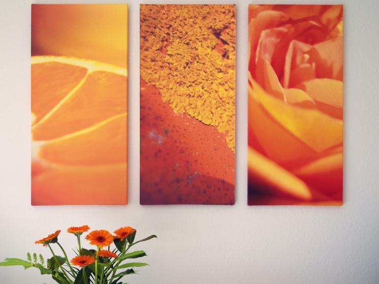 Viele Formate zur Auswahl: Bei Bilder.de können Sie Ihre Fotos auf Leinwänden in verschiedenen Größen von 20 x 20 cm bis 100 x 150 cm drucken lassen. Bestellungen, die bis 13 Uhr eingehen, werden noch am selben Tag ohne Aufpreis per Express-Versand verschickt.
