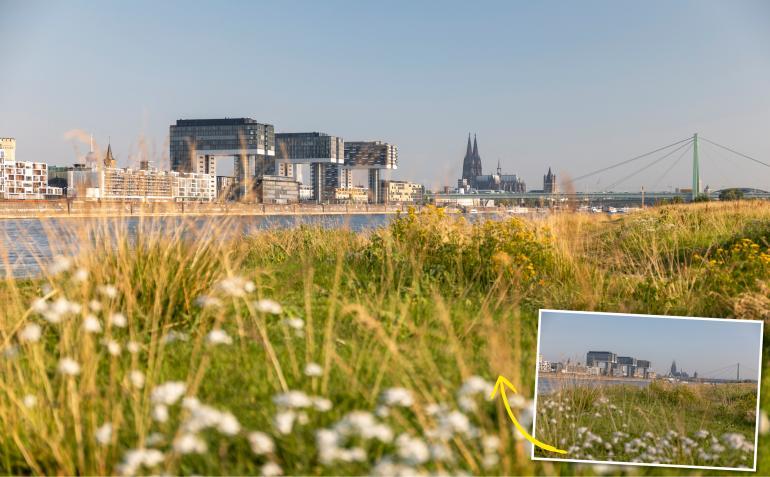 Kölner Skyline: Wir waren mit dem Manfrotto XUME Adapter und mit Manfrotto Filtern in der Rheinmetropole unterwegs - Canon EOS 5D Mark IV | 57mm | 1/6 s | F/4 | ISO 100.