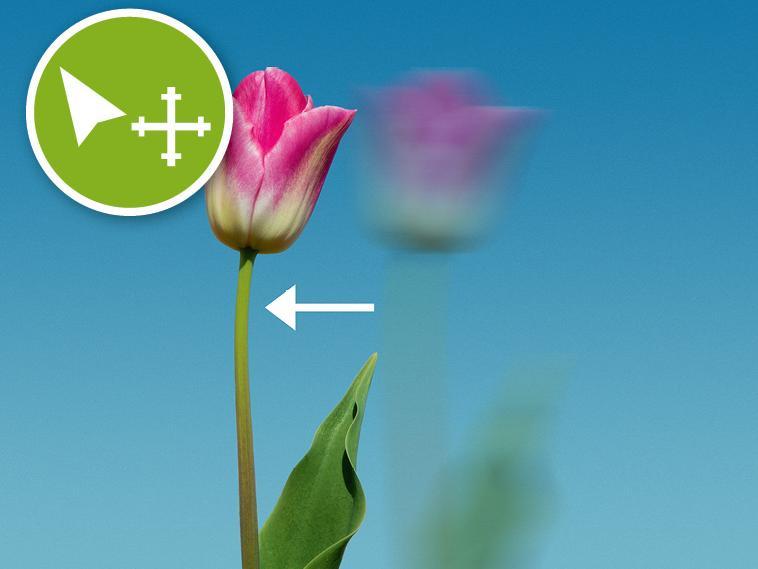 Werkzeuge für Bildbearbeiter - Photoshop einfach erklärt