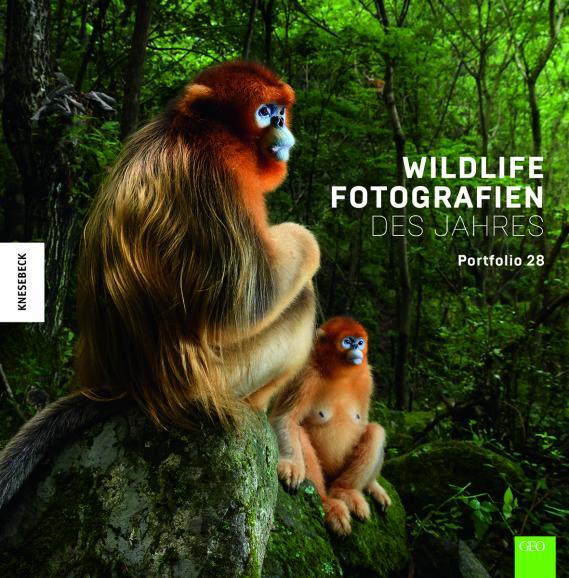 Das Buch zum diesjährigen Wettbewerb zeigt die 100 besten Beiträge. Die deutsche Ausgabe erschien im Kenesebeck-Verlag.