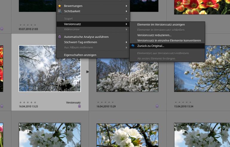 Photoshop Elements 9: Fotos laden & speichern