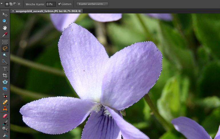 Photoshop Elements 9: Auswahlen erstellen