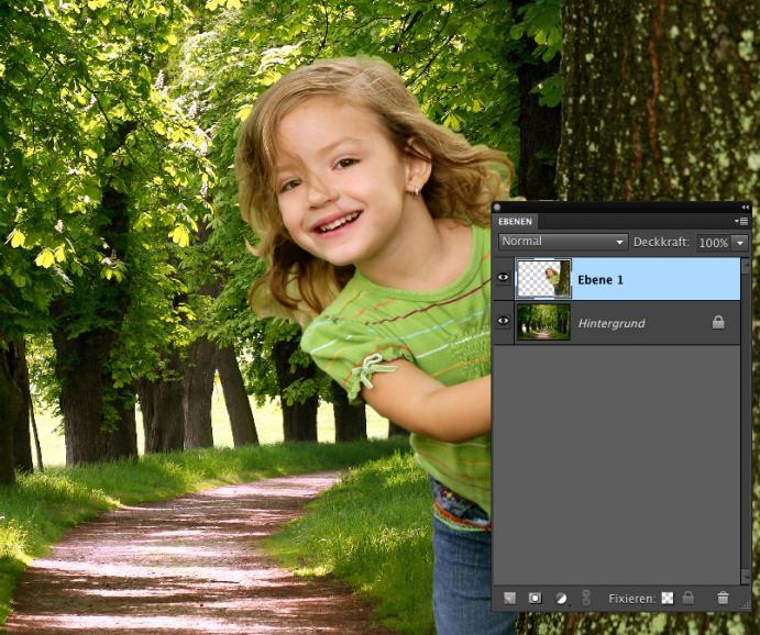 Photoshop Elements 9: Ebenen