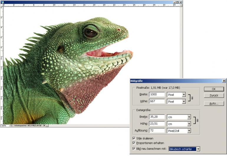 Web-Bilder: Perfekte Schärfe mit Photoshop