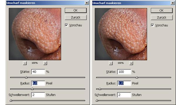 Mit Photoshop Fotos für den Druck schärfen