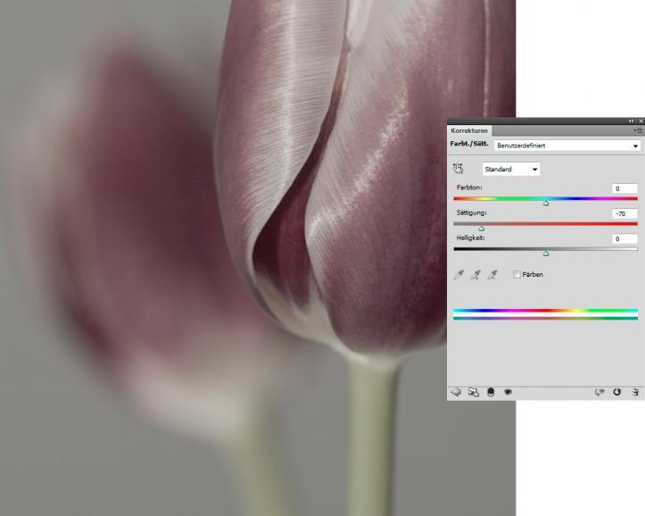 Mit Texturen kreativ gestalten