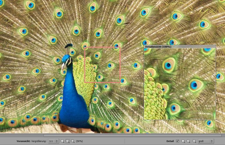 RawTherapee: RAW-Bilder unkompliziert entwickeln
