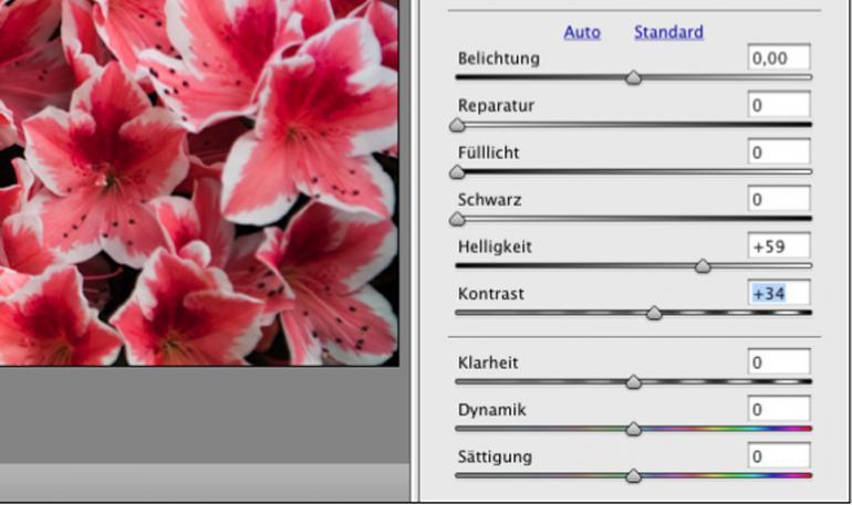 Basiswissen: Farbkorrekturen in Camera RAW