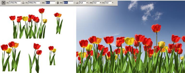 Photoshop: Freistellen mit Farbkanälen