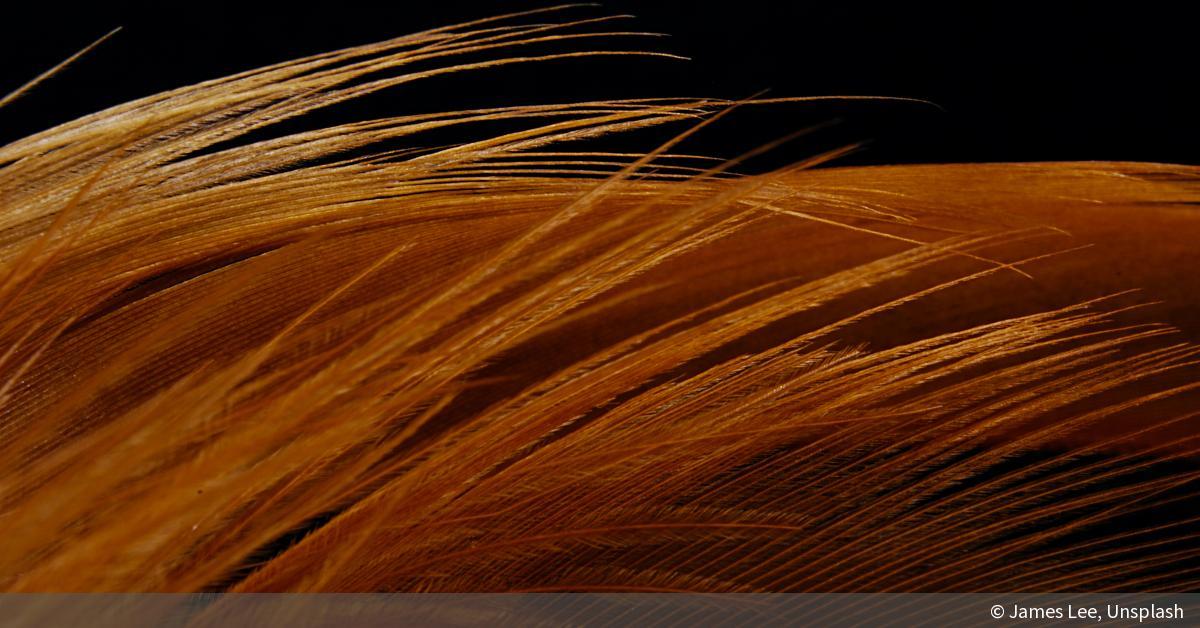 11 Inspirationen für abstrakte Bilder | DigitalPHOTO