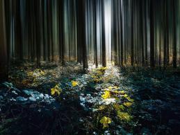 Atmosphärische Fotos mit dem Wisch-Effekt erzeugen
