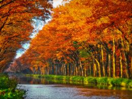 10 Herbstmotive aus unserer DigitalPHOTO Lesergalerie