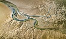 Kraft der Natur: 5. Stapelfelder Fototage