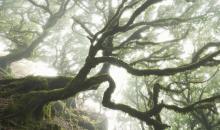 So gelingen magische Langzeitbelichtungen für Landschaftsaufnahmen