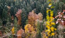 Foto-Basics: Tiefenwirkung bei Landschaften