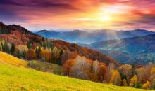 Foto-Basics: Farbenfrohe Herbstfotos