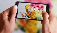 Foto-Basics: scharfe Smartphonefotos